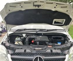 Mercedes Sprinter 313 Remap